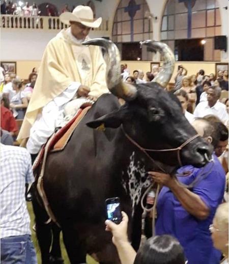 Preot catoli intrând călare pe taur în biserică - mulțimile aclamă